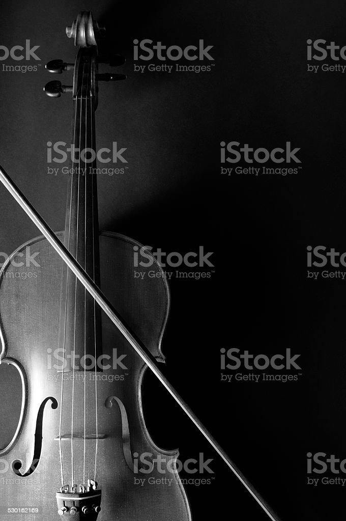 Violin, black and white photo stock photo
