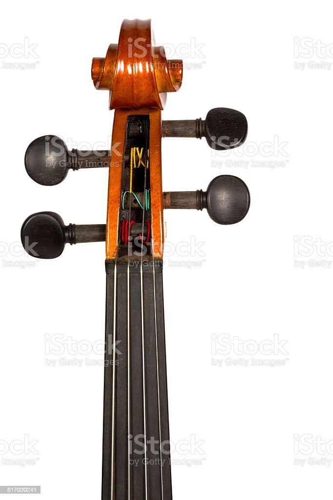 violin head stock and tuning pegs stock photo