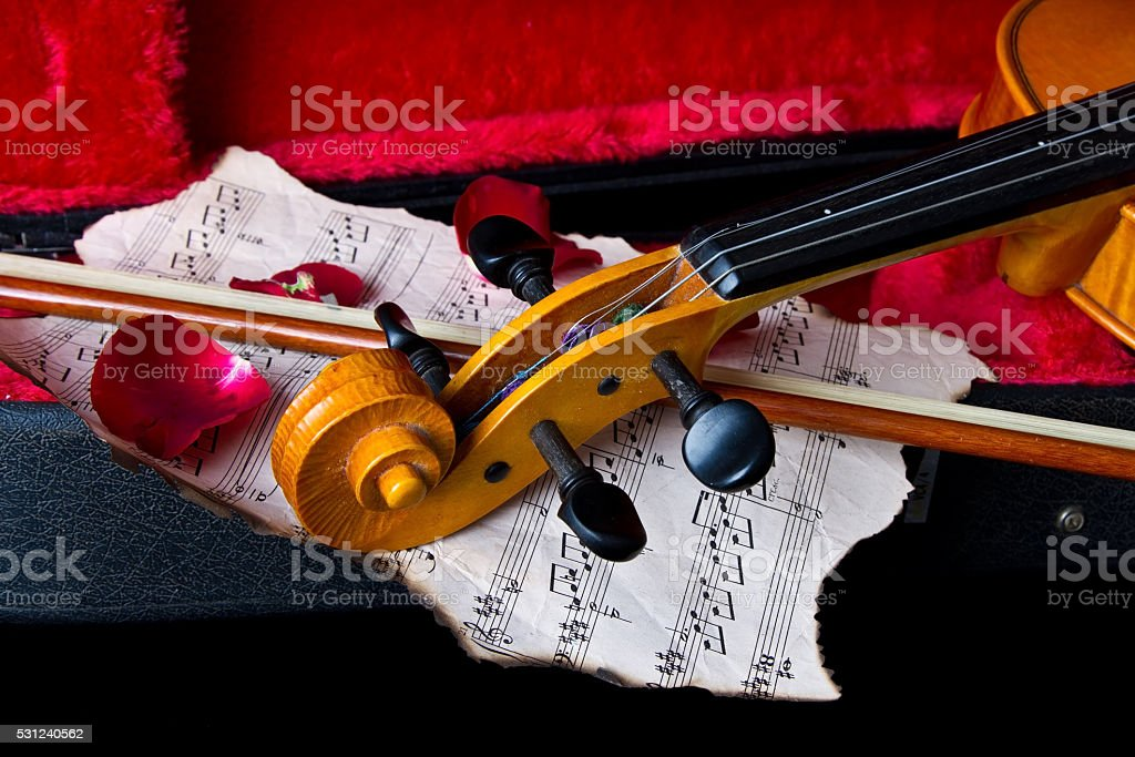 Violin in carry case stock photo