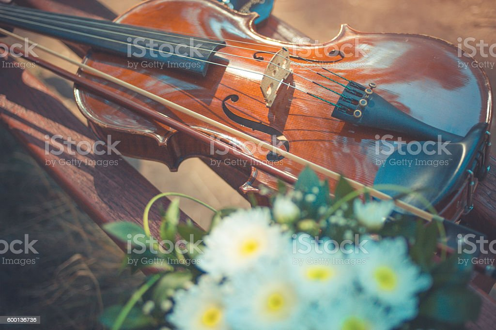 Violin in vintage style on wood background stock photo
