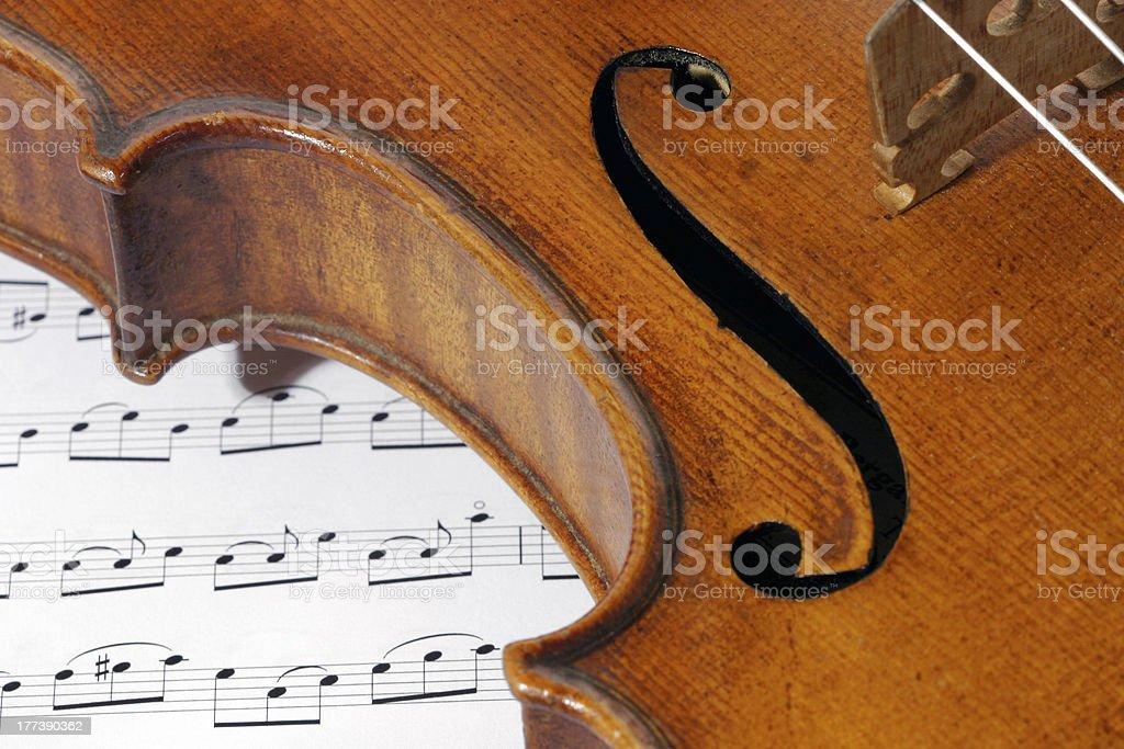 Violin macro royalty-free stock photo