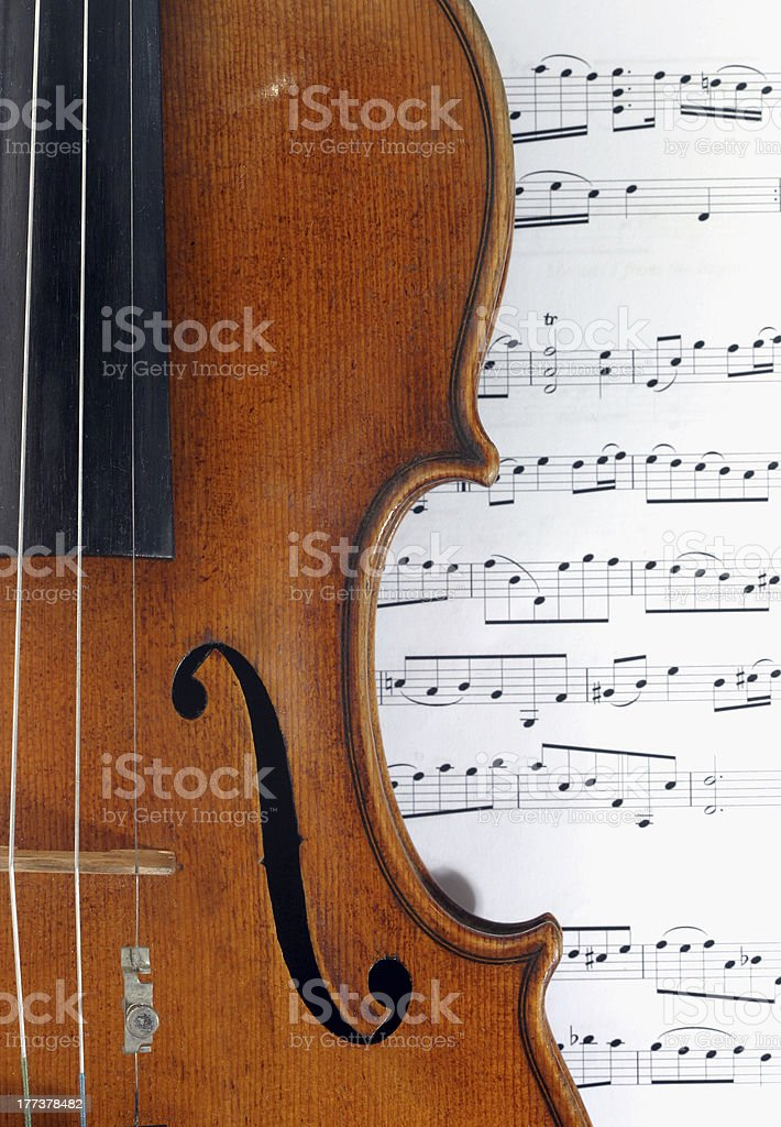 Violin macro shot royalty-free stock photo