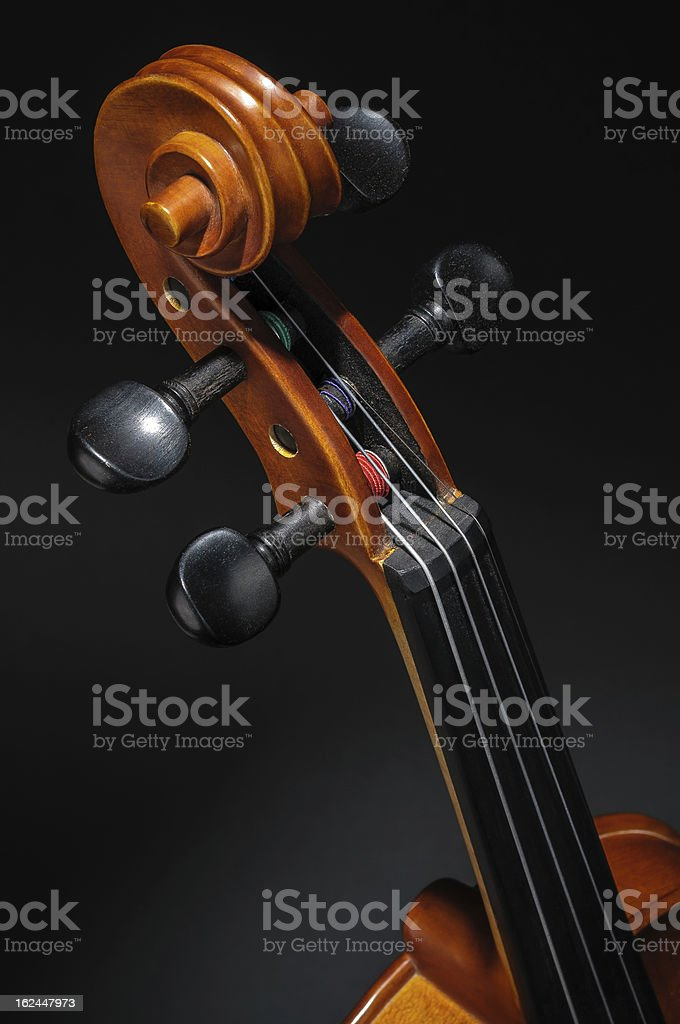 Violin neck, pegbox and scroll detail royalty-free stock photo