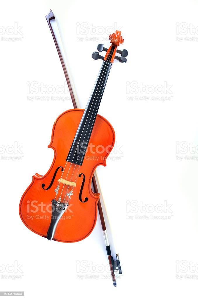 Violin on white background stock photo