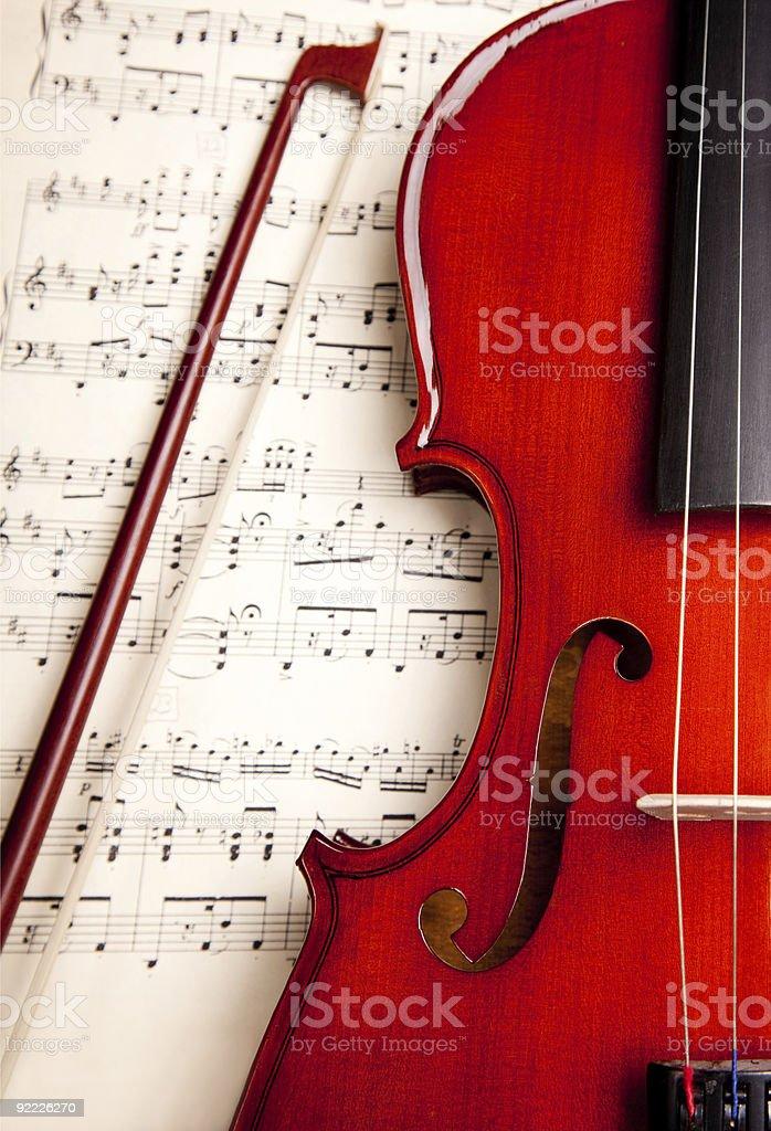 violin stock photo