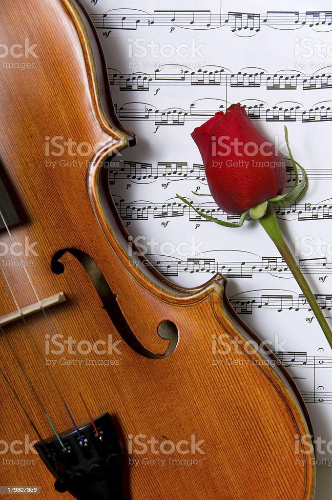 Violin, rose and sheet music stock photo