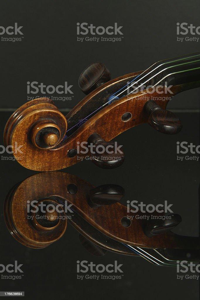 violin_1 stock photo