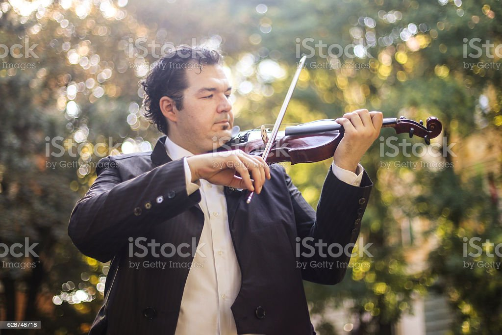 Violinist in park stock photo