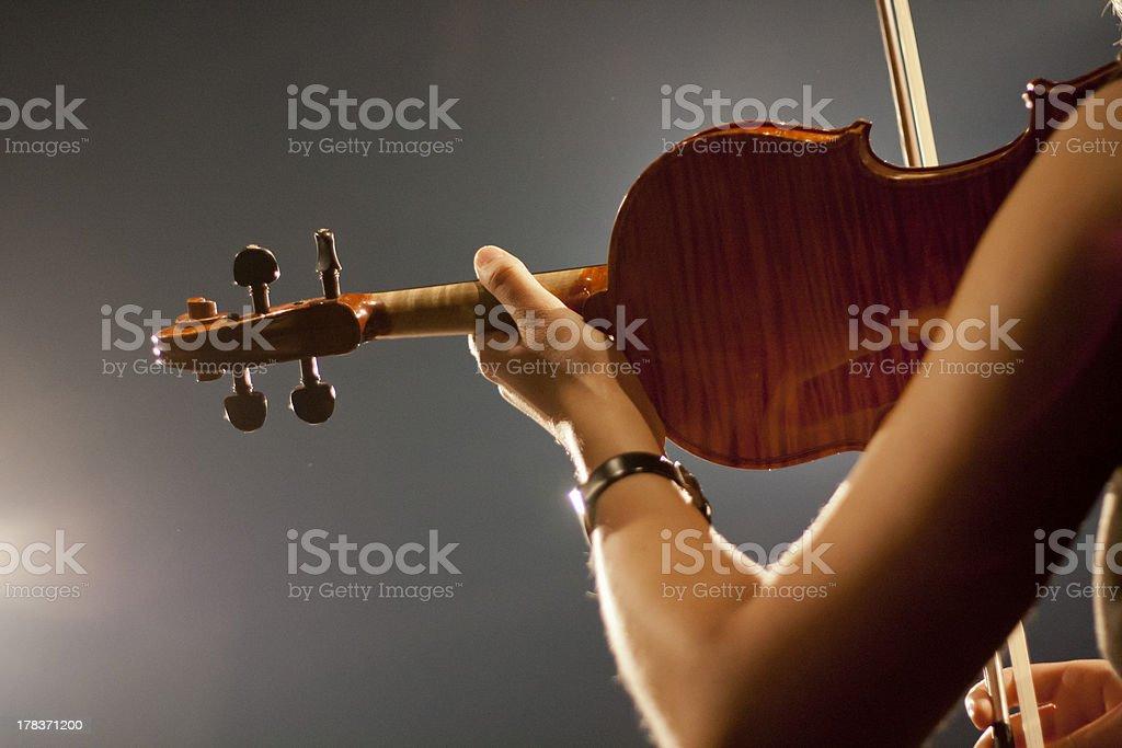 Violinist royalty-free stock photo