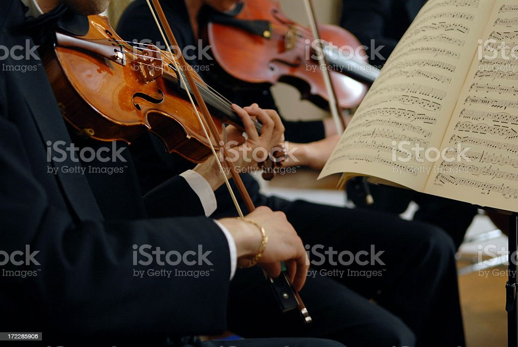 Violinists play in an orchestra royalty-free stock photo