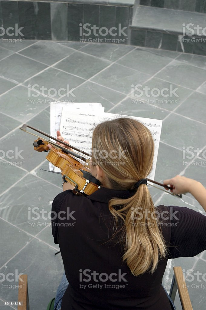 violin,violinist,note and performance royalty-free stock photo