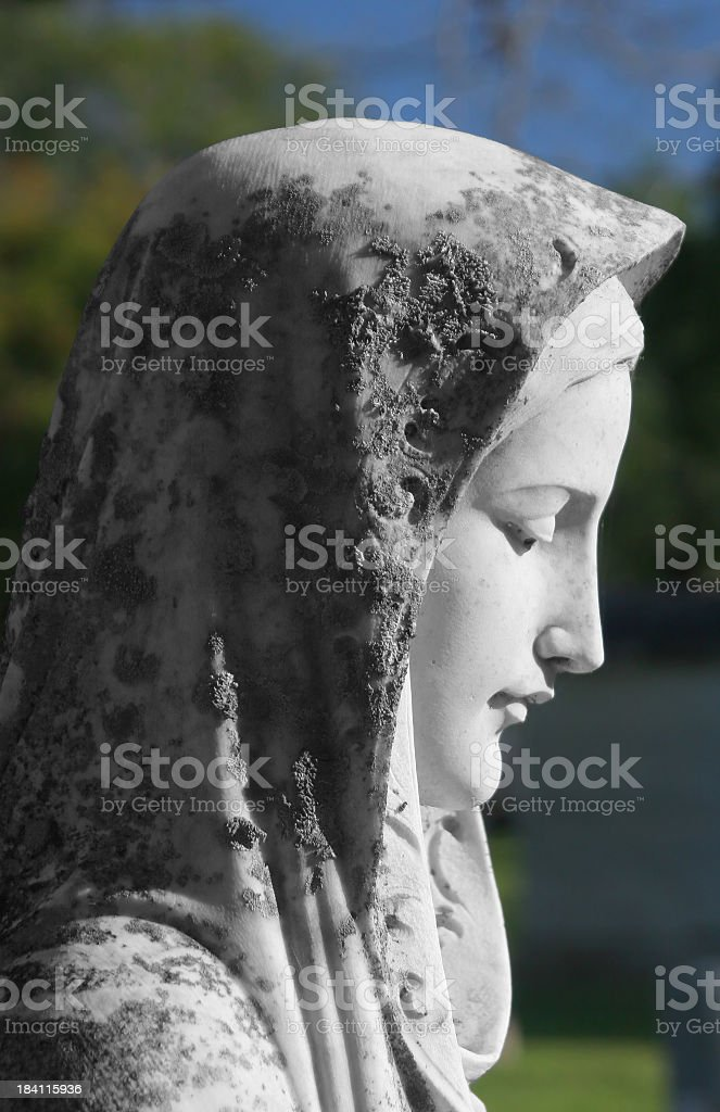 Virgin Mary royalty-free stock photo