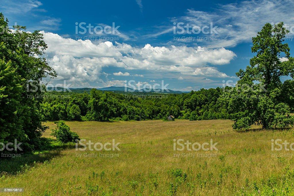 Virginia Summer Meadow stock photo
