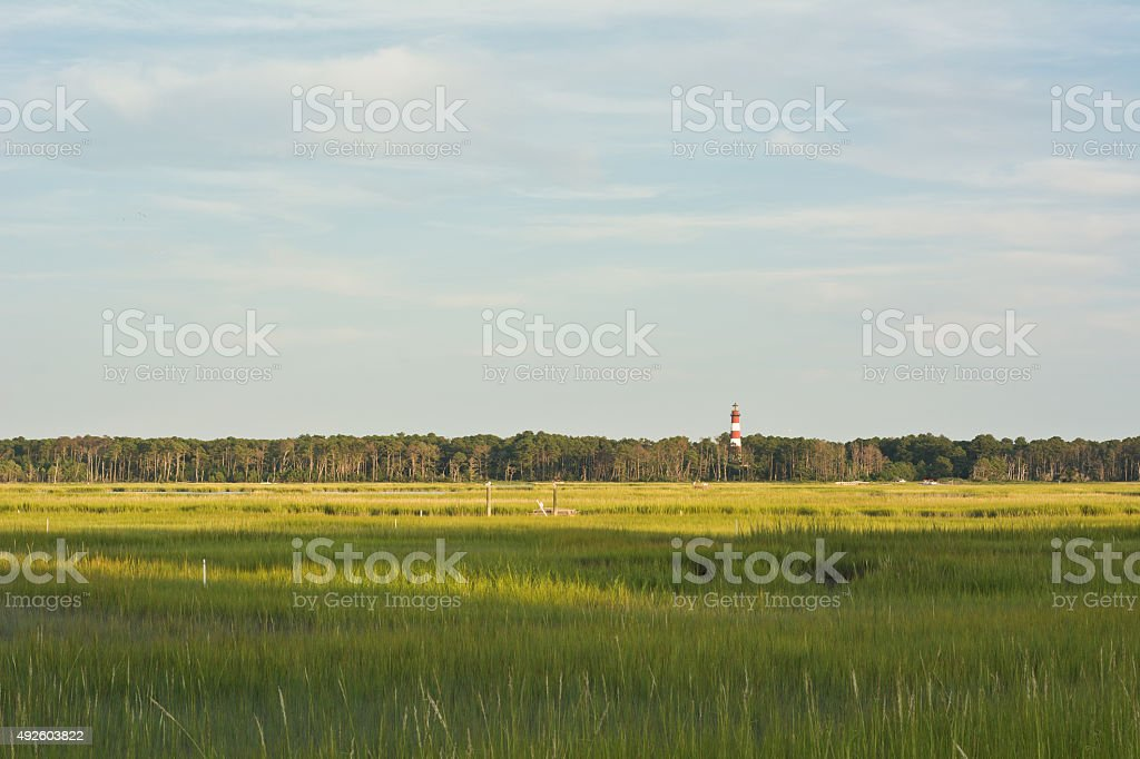 Virginia Wetlands and Lighthouse stock photo