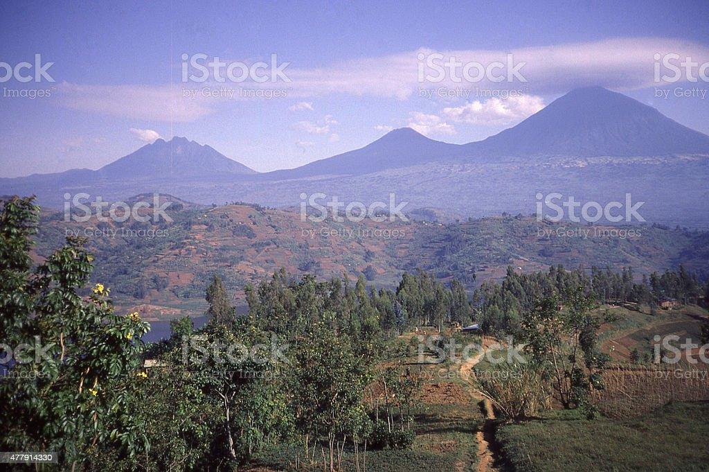 Virunga Mountains Volcanoes Sabyinyo Gahinga Muhabura Rwanda Central Africa stock photo