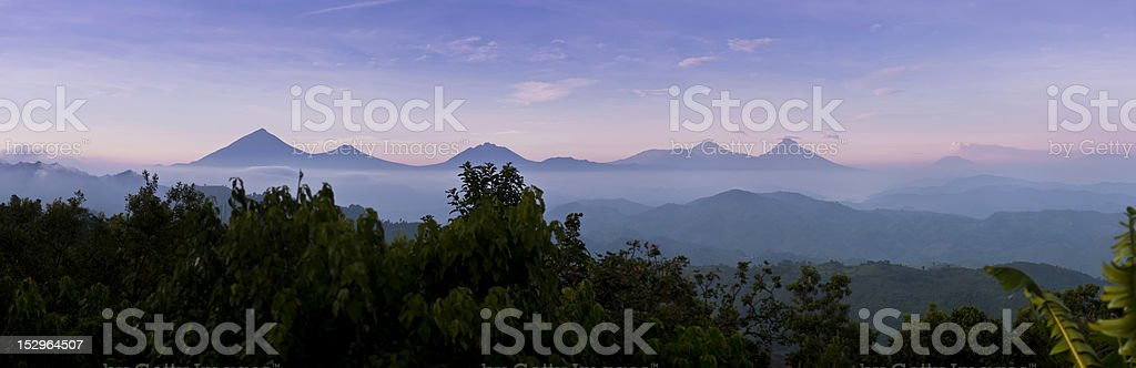 Virunga stock photo