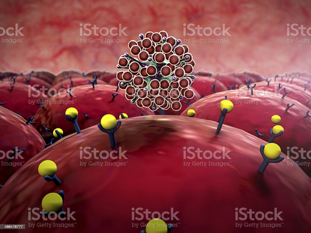 virus, cells stock photo