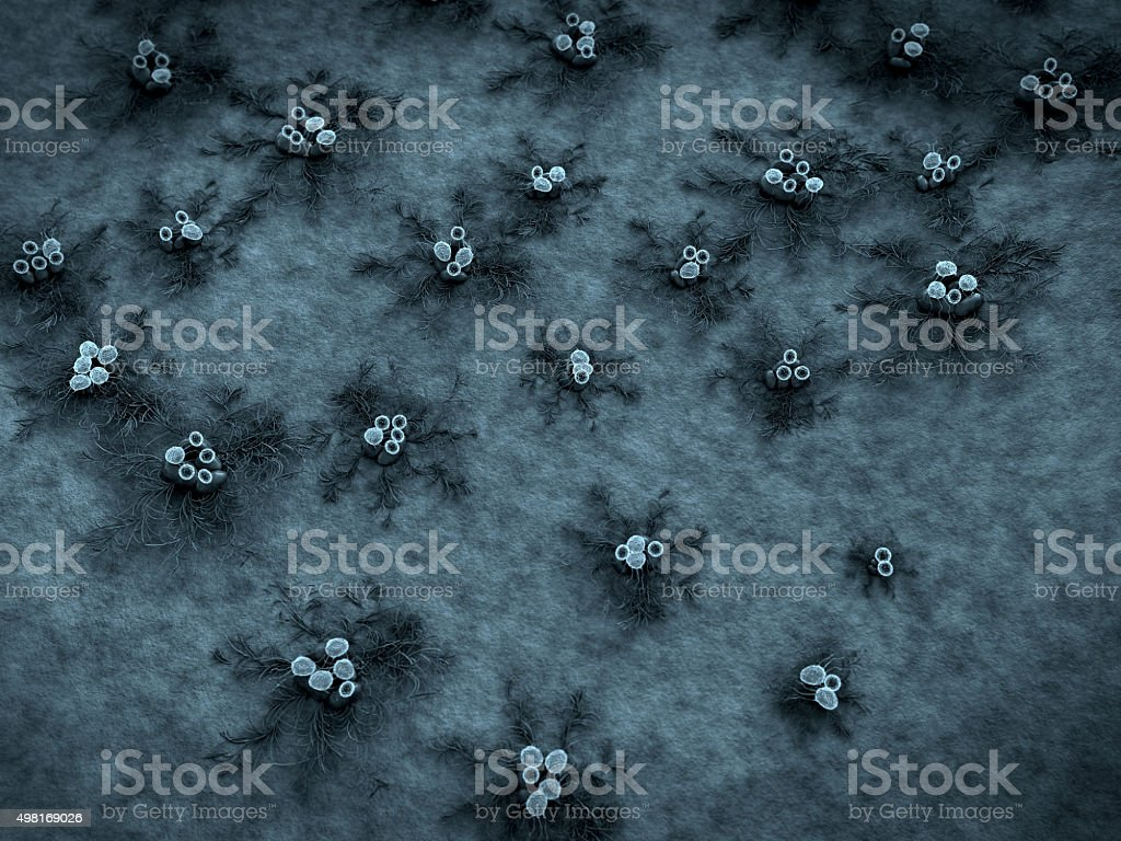 viruses and bacteria stock photo