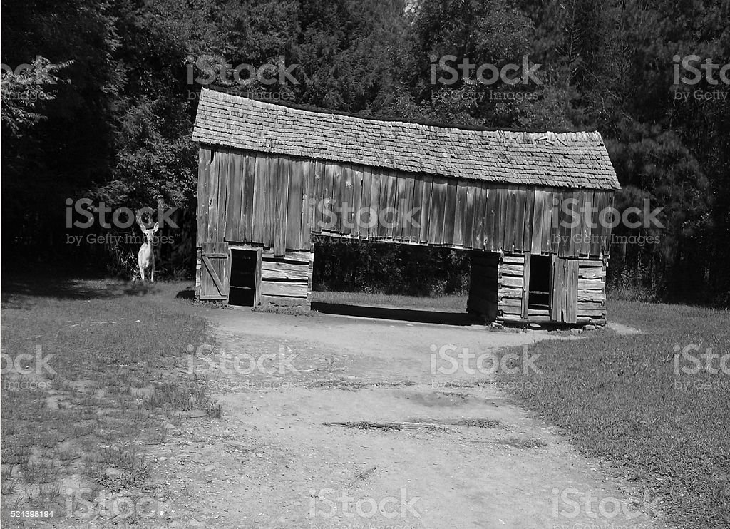 Visit to Cade's Cove stock photo