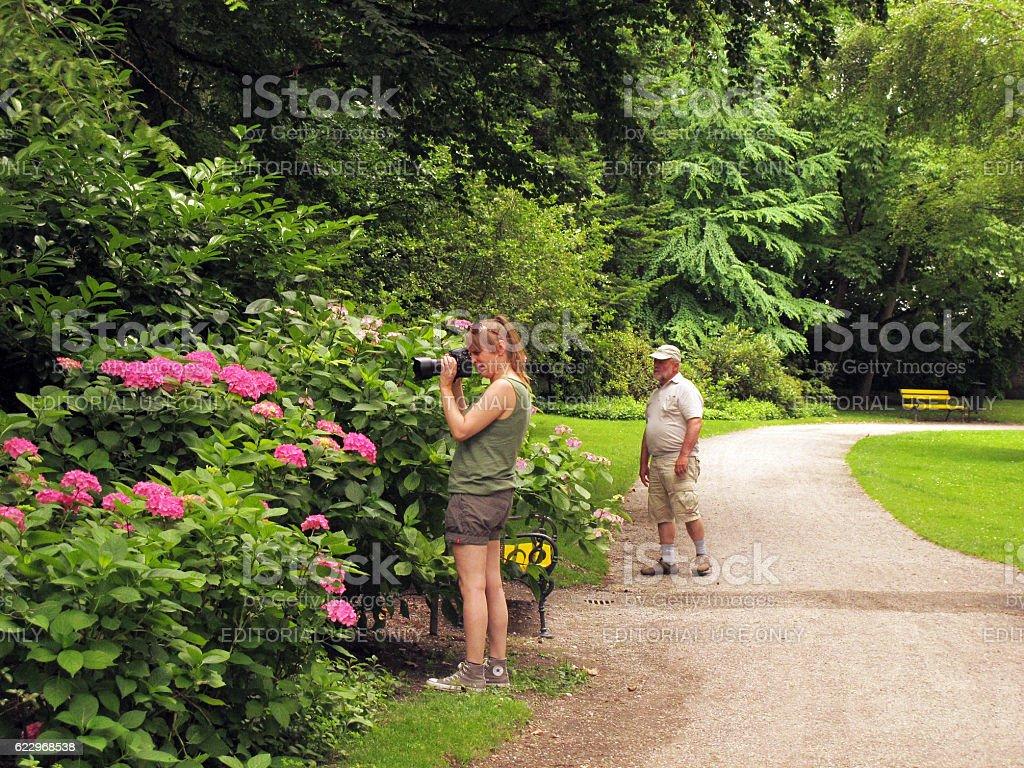 visiting the botanical garden of Innsbruck stock photo