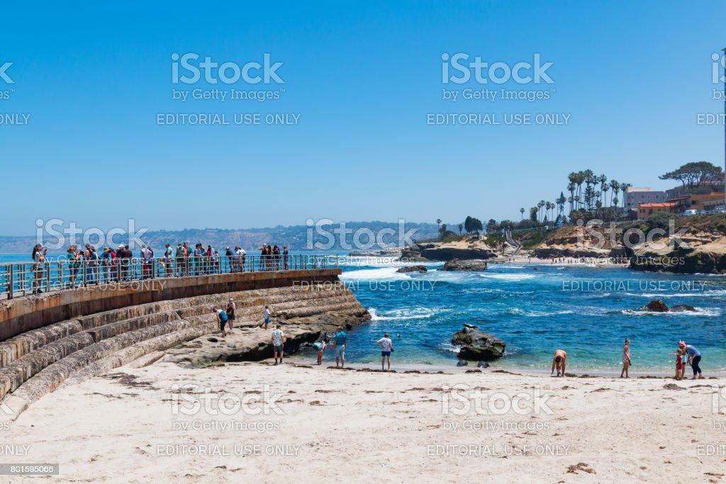 Visitors at the La Jolla Children's Pool stock photo