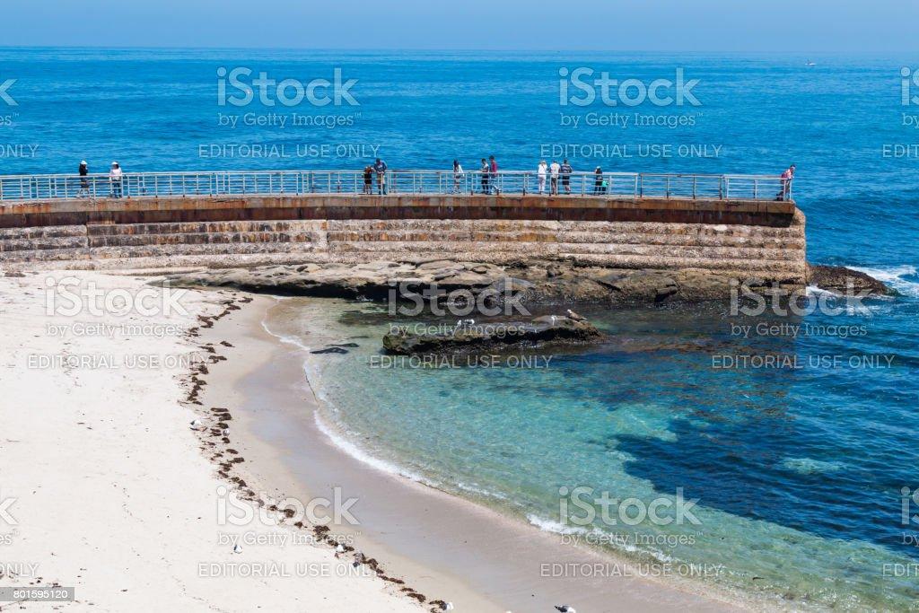 Visitors Standing on La Jolla Children's Pool Sea Wall stock photo