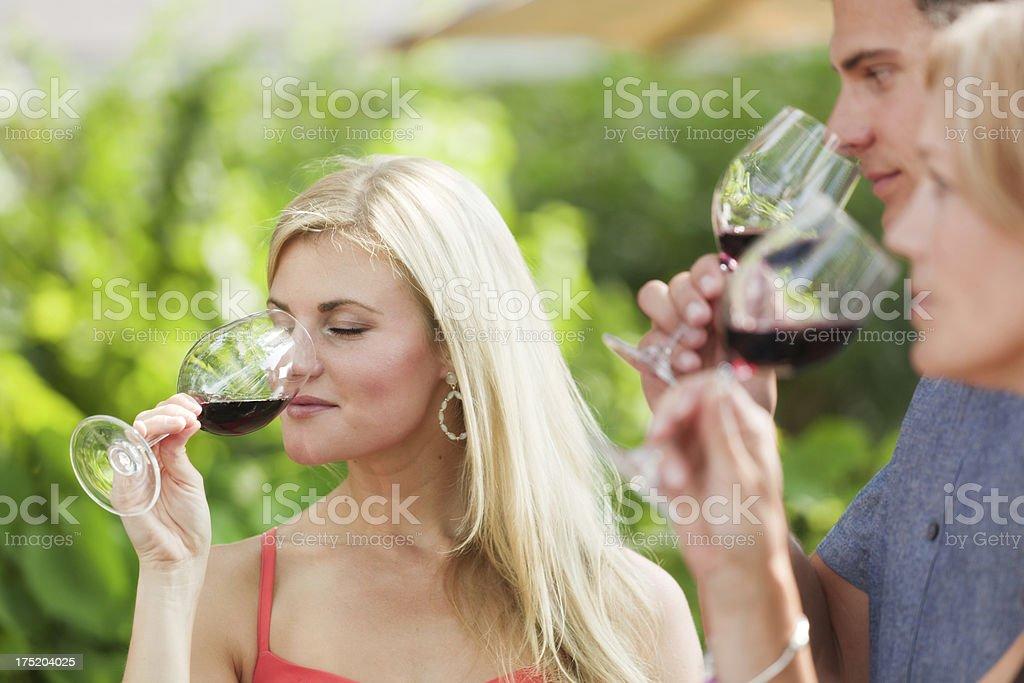 Visitors Tourists Enjoying Wine Tasting Outdoor at Winery Vineyard Hz royalty-free stock photo