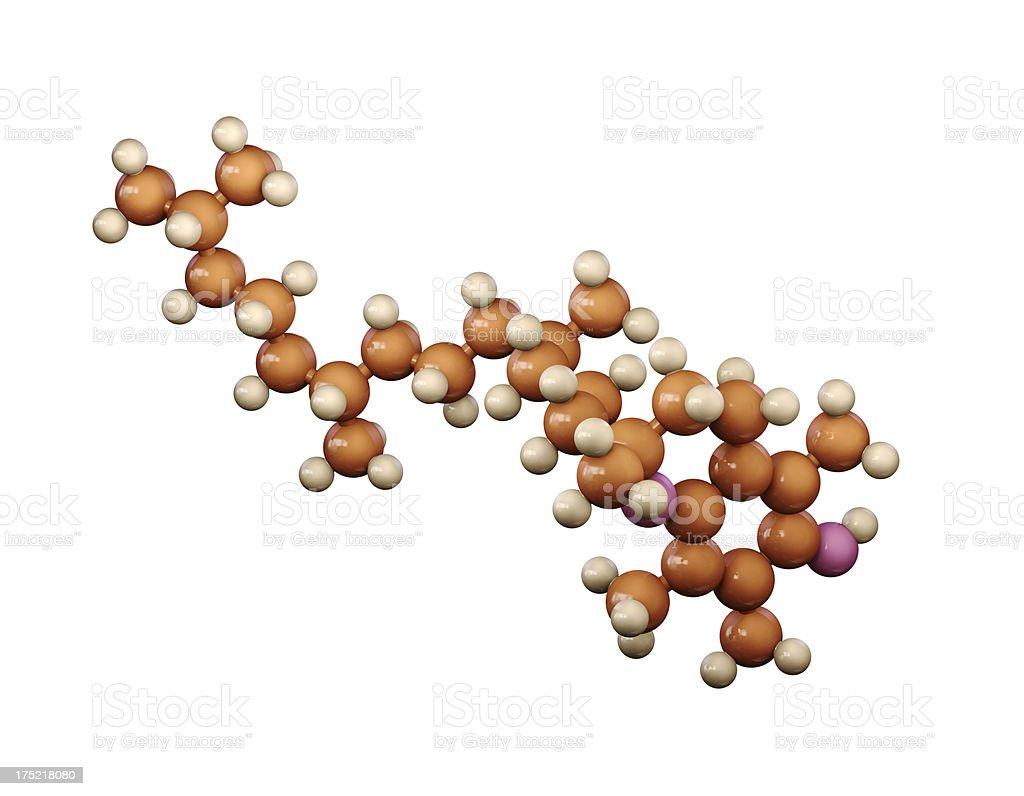 Vitamin E royalty-free stock photo