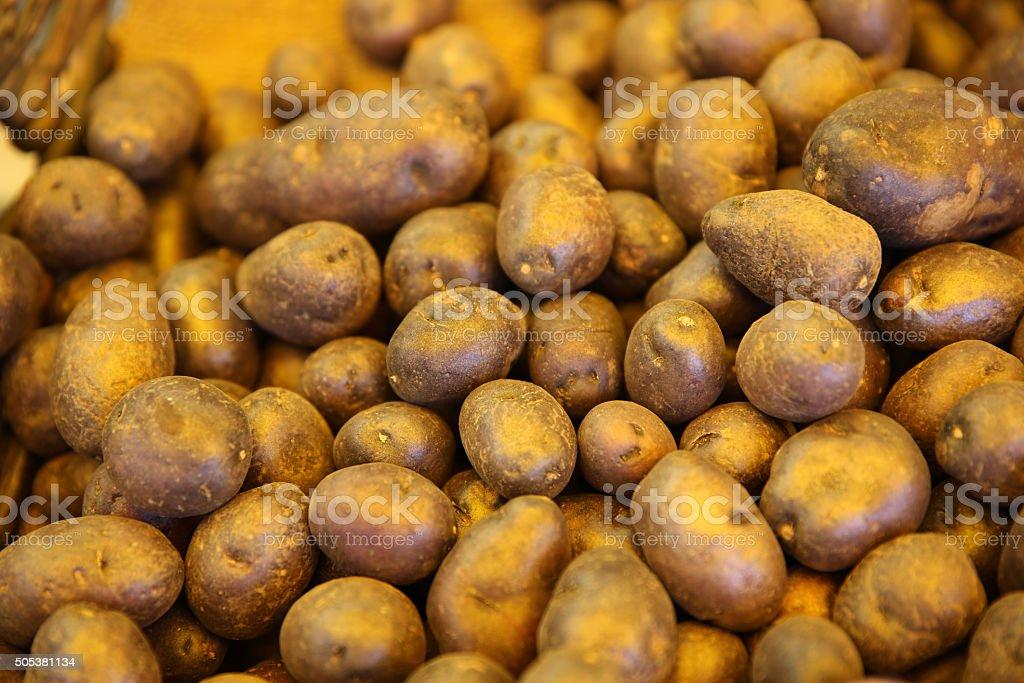 Vitolette Potato stock photo
