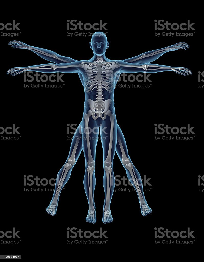 Vitruvian Man 3D stock photo
