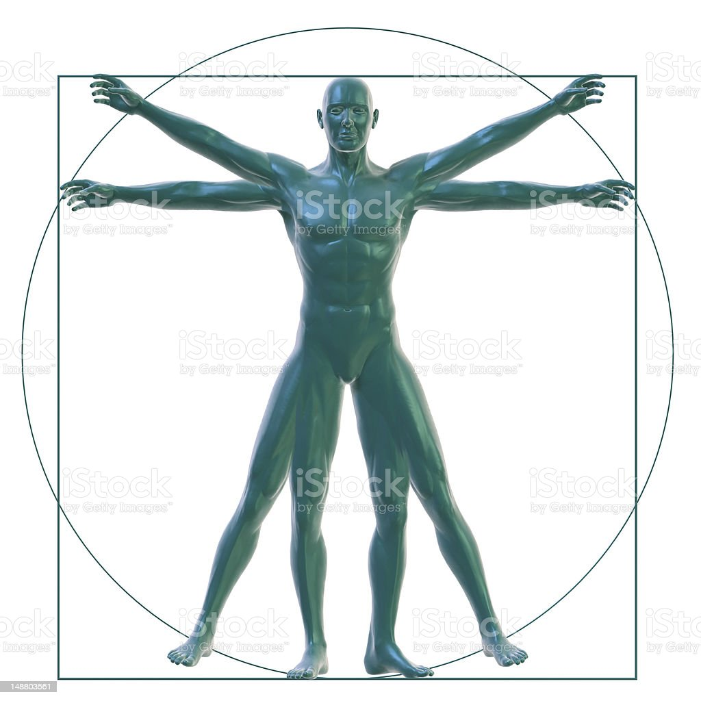 Vitruvian man on white stock photo