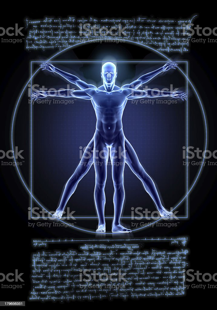 Vitruvian Man royalty-free stock photo