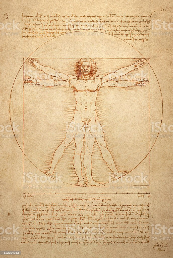 Vitruvian Man vector art illustration