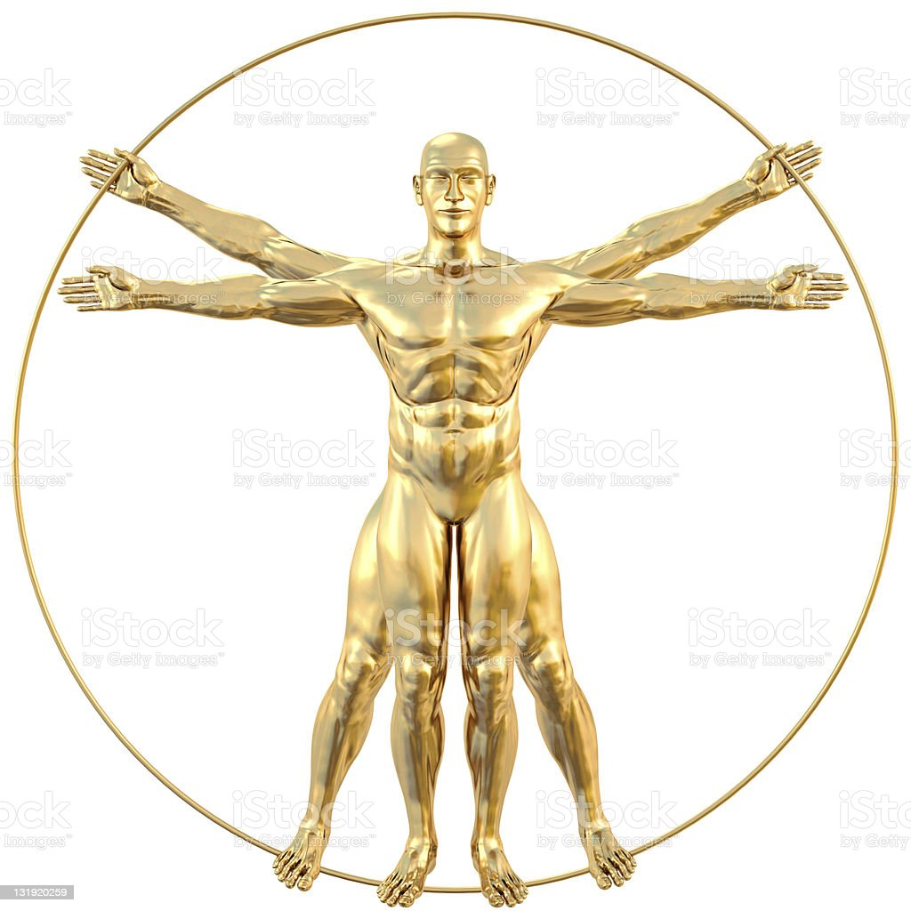 vitruvian stock photo