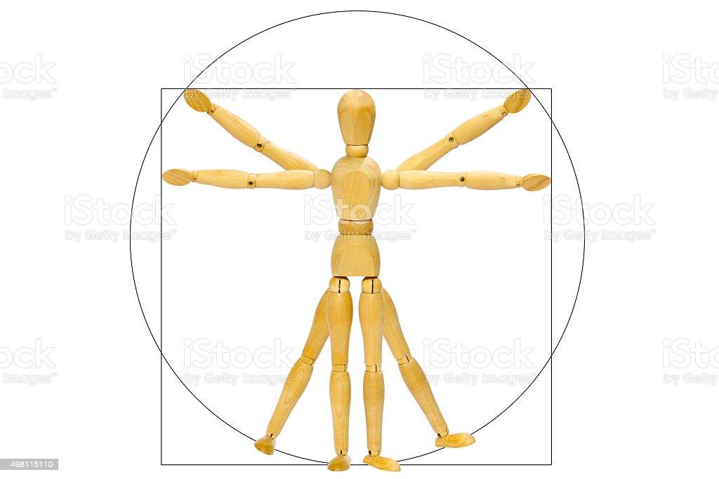 Vitruvio mannequin stock photo