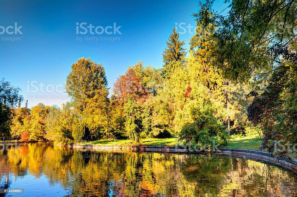 Vivid Autumn Landscape In The Park stock photo