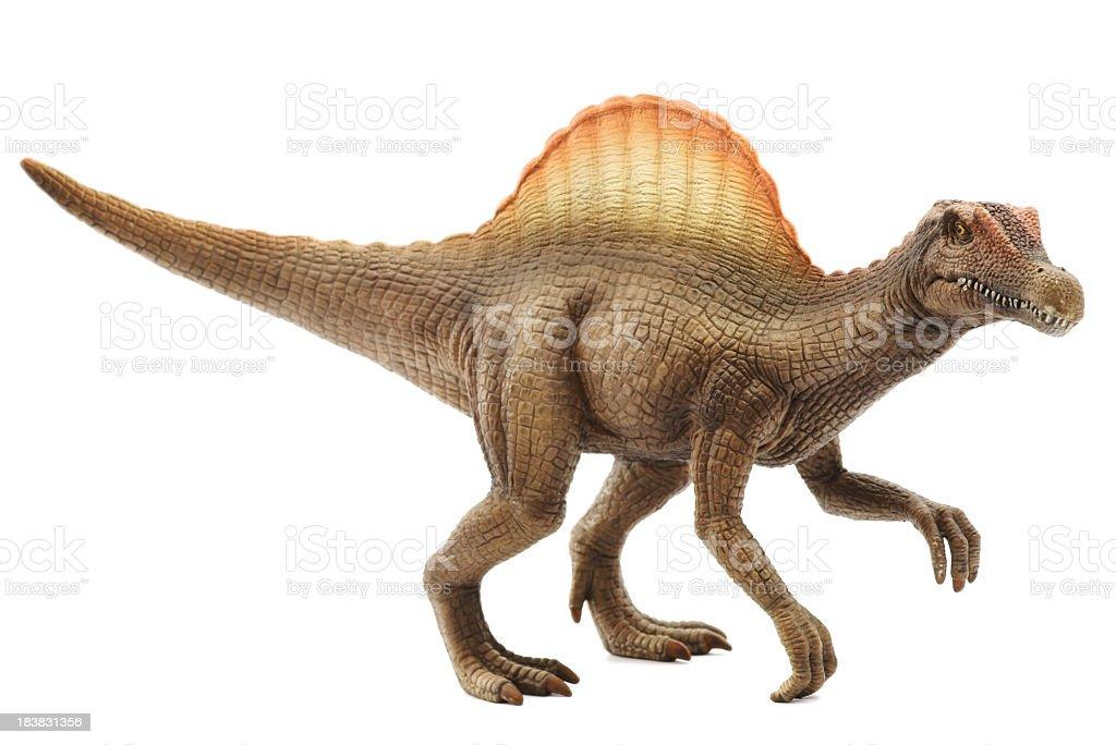 Vivid model of spinosaurus in white background stock photo
