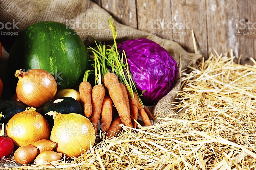 Vividly colored fresh vegetables in farmers market stock photo