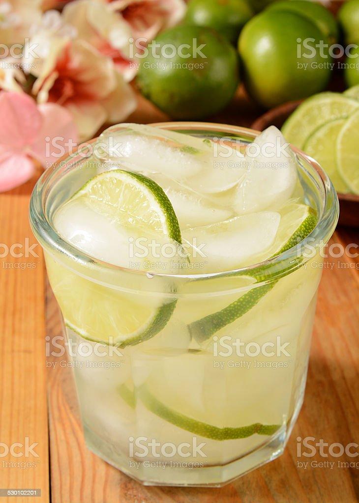 Vodka lime stock photo