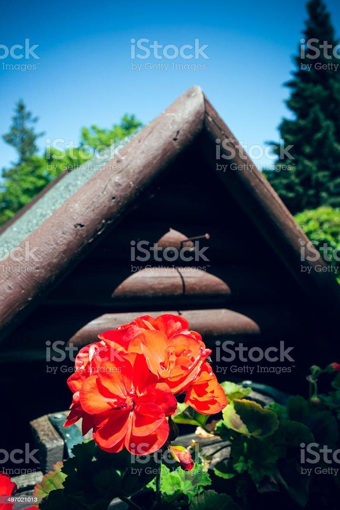 Vogelhaus in der Natur stock photo