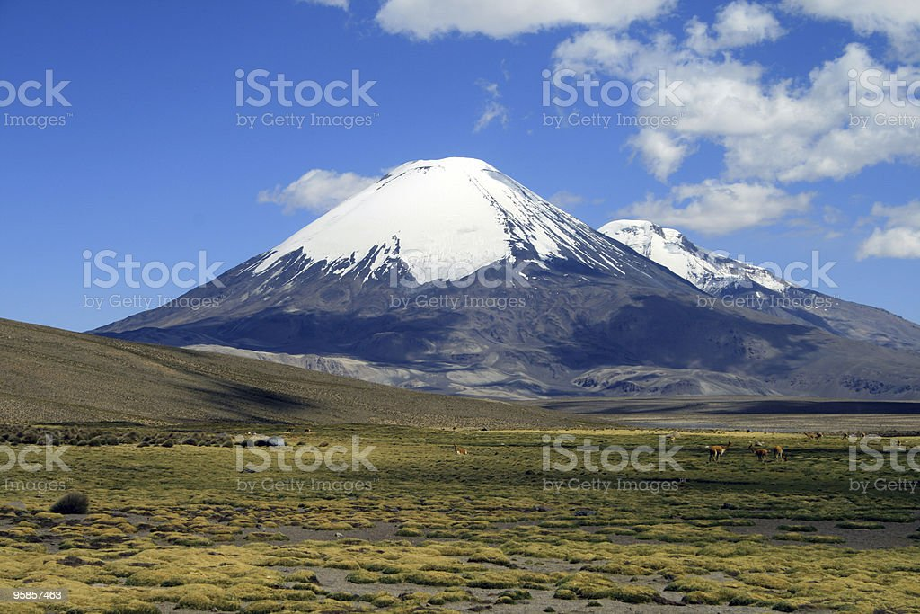 Volcan Parinacota in Chile - landscape stock photo