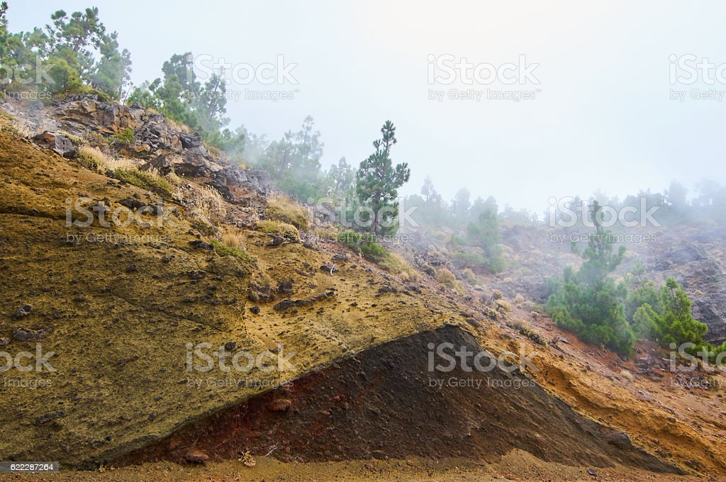 Volcanic ashes in Teide's Natural Park stock photo