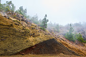 Volcanic ashes in Teide's Natural Park