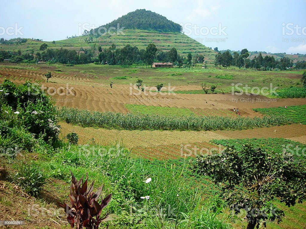 Volcanic Cinder Cone and Tropical Agriculture Mudende Rwanda stock photo