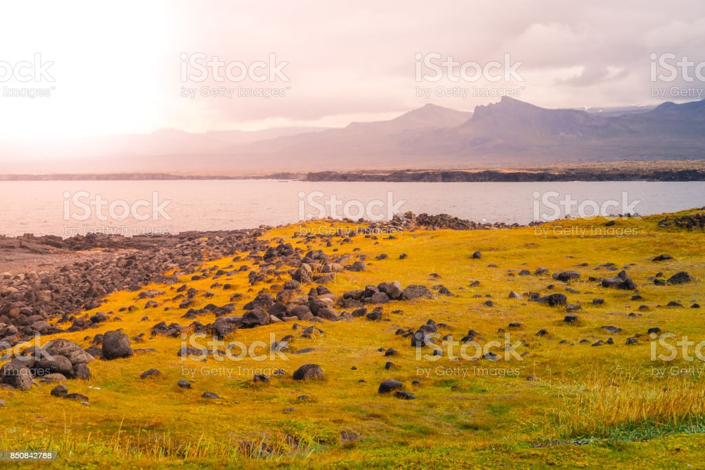 Volcanic landscape with green plains and rocky coast in Snaefellsnes peninsula, Iceland stock photo