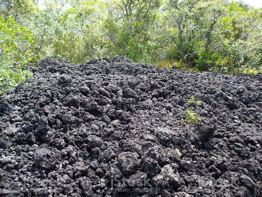 Volcanic lava field stock photo
