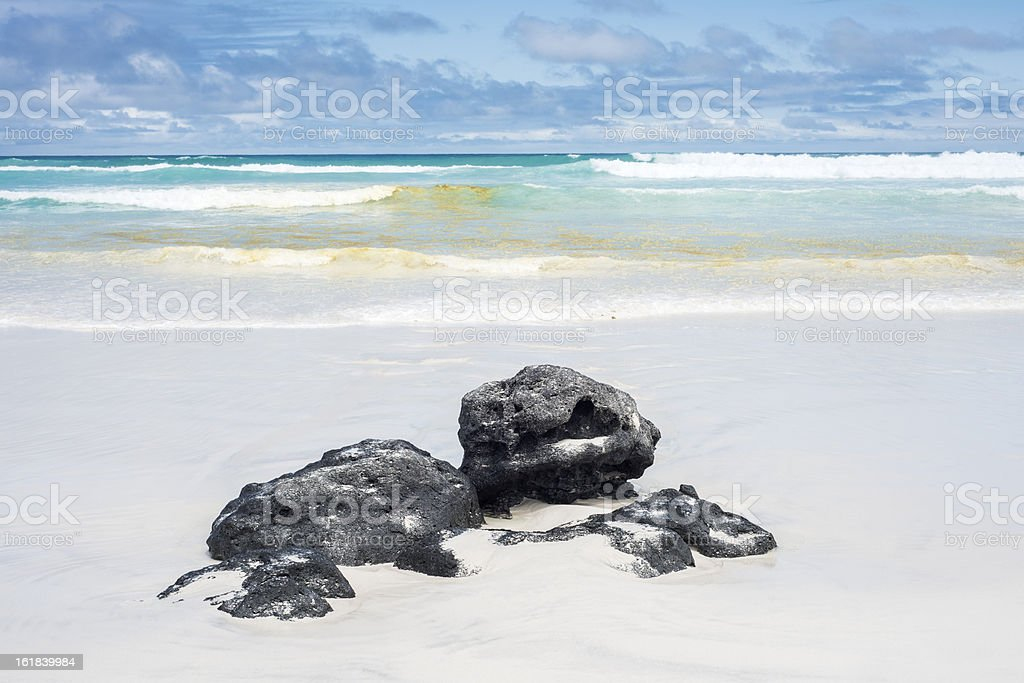 Volcanic pumice stones on the Tortuga Bay, Santa Cruz, Galapagos stock photo