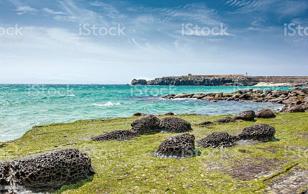 Rochas vulcânicas de Tarifa. Playa Chica foto royalty-free