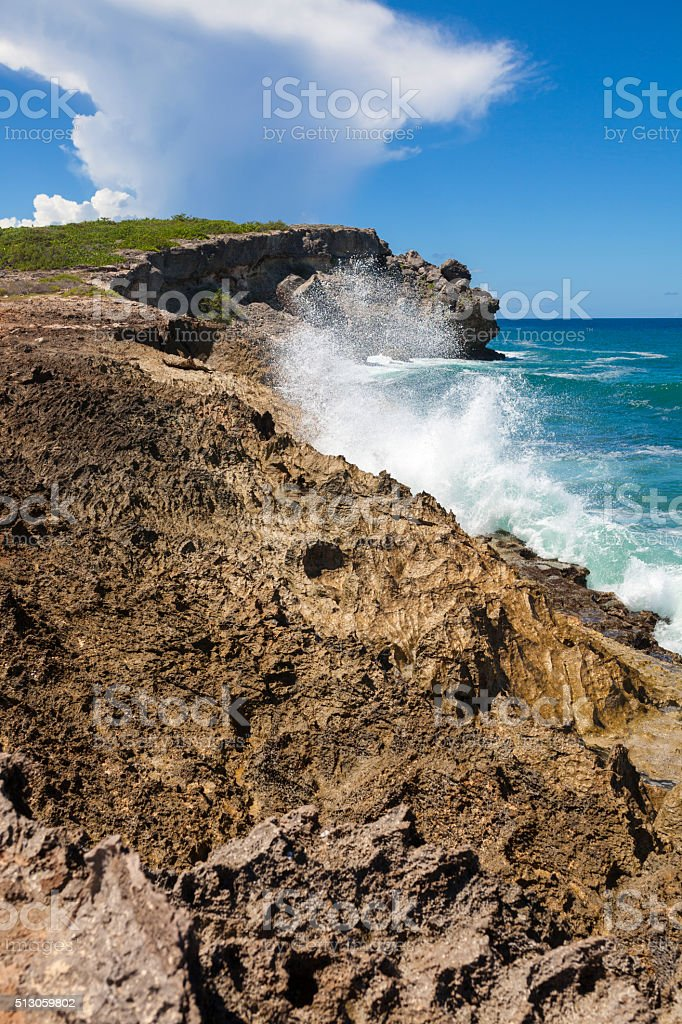 Volcanic Seashore stock photo
