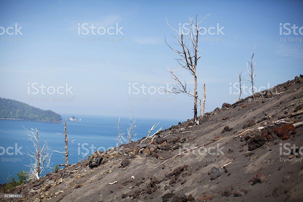 Volcano Anak Krakatau stock photo
